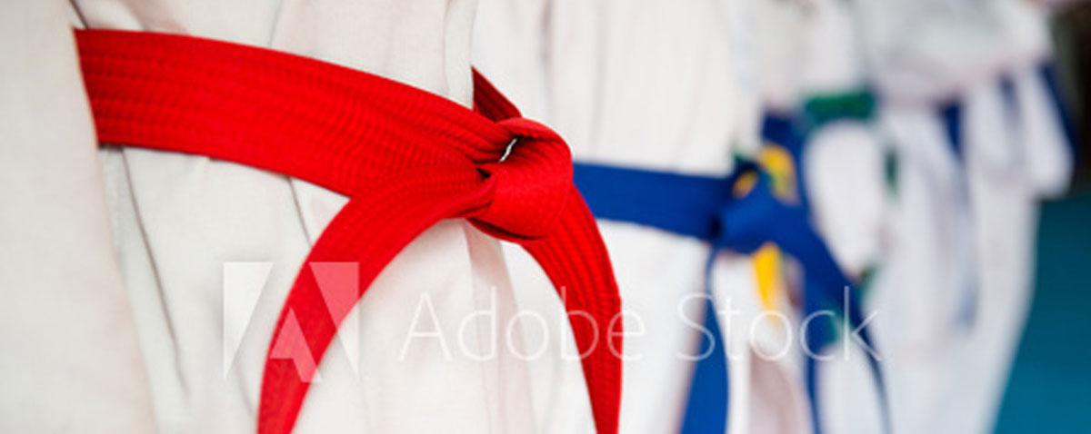 Wintaekwondo Header